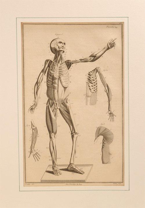 31Charpentier medical antique print p