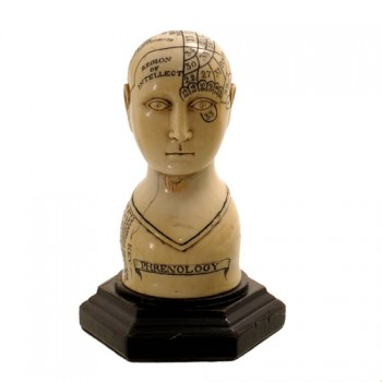 201phrenology head Ivory - van leest antiques (1)
