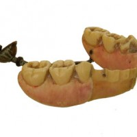 Dentures Ivory lower jaw - van Leest Antiques (3)