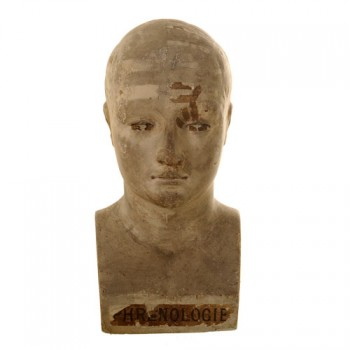Vago phrenology head - van Leest Antiques (1)