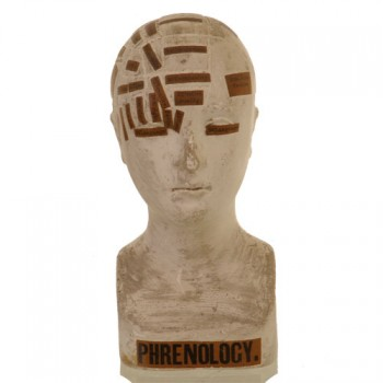 Vago phrenology head - van Leest Antiques jpg (1)