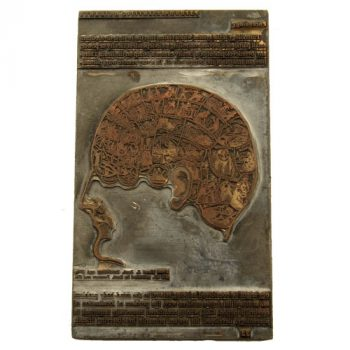 xylography-block-phrenology-van-leest-antiques-1