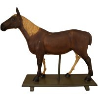 Anatomical horse model - van Leest Antiques (2.1)