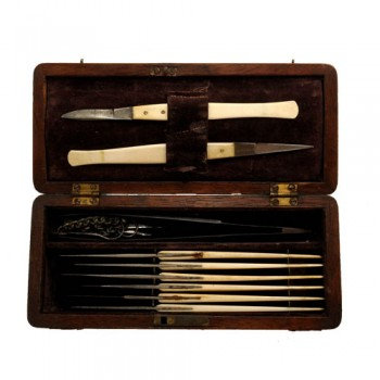 weedon surgery set C 1830 - van leest antiques (1)