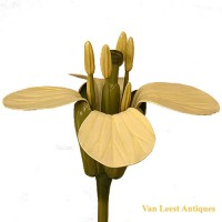 Brassica Flower model - van Leest Antiques  (5)